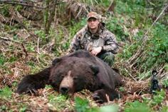 My biggest dream is to go bear hunting! Black Bear, Brown Bear, Grizzly Bear Hunting, New Pictures, Wilderness, Deer, Wildlife, Adventure, Hate