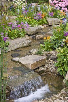 absolutely gorgeous garden photos