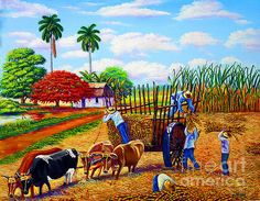 Shop for cuban art from the world's greatest living artists. All cuban artwork ships within 48 hours and includes a money-back guarantee. Choose your favorite cuban designs and purchase them as wall art, home decor, phone cases, tote bags, and more! Latin America, Fine Art America, Cuba Stock, Bullock Cart, Philippine Art, Cuban Art, History Timeline, Canvas Ideas, Sugar