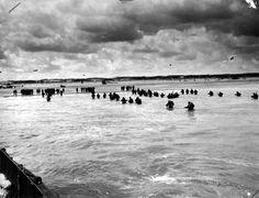 Les troupes fraiches débarquent en file indienne sur Utah Beach. Photo prise d'un LCVP, débarquement de renforts, les hommes marchent dans l'eau avec de l'eau à la ceinture. Photo prise avec un cadrage à droite de la p012600 voir le matériel sur la plage comme repère.