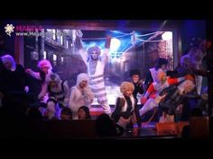 Movie Stars Cafe's Cats The Musical