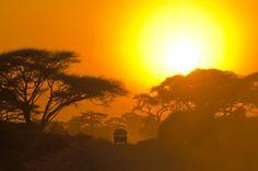 afrika reise im winter