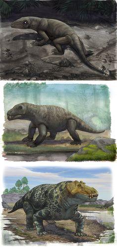 Permian reptiles by atrox1.deviantart.com on @DeviantArt