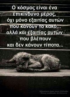 . Kindness To Animals, Smart Quotes, Greek Quotes, True Facts, Picture Quotes, My Best Friend, Life Is Good, Dog Lovers, Motivational Quotes