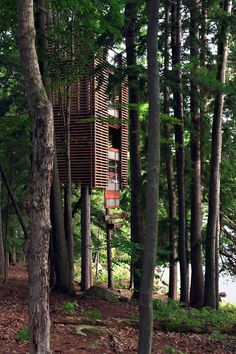Lukasz Kos, house, Walker's Point, Lake Muskoka Ontario (Canada) 10 Of The World's Most Amazing Tree Houses Beautiful Tree Houses, Cool Tree Houses, Ontario, Tree House Designs, Fairytale Castle, In The Tree, 10 Tree, Play Houses, Cabana