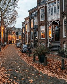 Autumn Rain, Autumn Trees, Autumn Aesthetic, Best Seasons, Utrecht, Autumn Inspiration, Fall Halloween, Netherlands, Landscape Photography