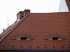 not sure if this roof is looking at me or this roof is looking at me.