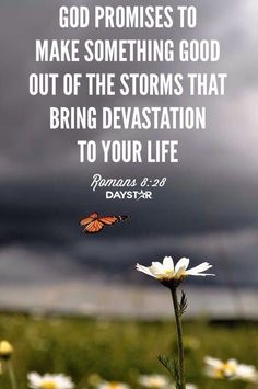 Bible Verses: god promises to make something good out to the atorms that bring devastation to your life faith quotes (((J.SeixasMilner))) on Bible Verses Quotes, Bible Scriptures, Faith Quotes, Bible Verses For Hard Times, Verses Of Hope, Bible Verses About Healing, Faith Bible Verses, Verses For Encouragement, Inspirational Christian Quotes