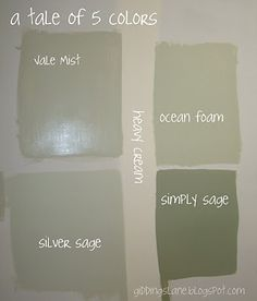 This is from Giddings Lane: The Finale to the 5 colors...  I am currently painting the cabinets at our cottage in 'Vale Mist' from the 'Ben' line of Benjamin Moore.  Love, love, love the coverage of the paint and the color!!  I actually am using 2/3 Vale Mist and 1/3 Saybrook Sage to darken it slightly.  It's still a light sage green and is just what I wanted.