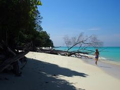 Tales from Antipodeans Abroad, Mantinani Island, Borneo