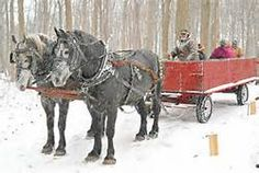 gene stratton-porter photography - - Yahoo Image Search Results