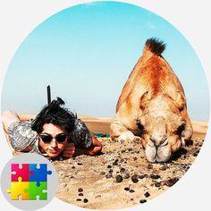 Free Jigsaw Puzzles, Camel, Animals, Animales, Animaux, Camels, Animal, Animais, Bactrian Camel