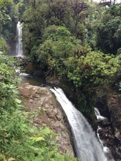 La Paz Waterfall Gardens, Costa Rica.