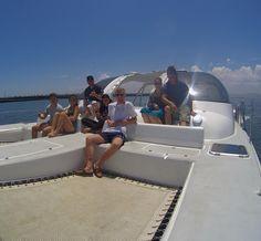 Kelp Forest, Cape Town, Scuba Diving, Surfboard, Shark, Opera House, Clouds, Building, Travel