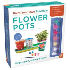 Paint+Your+Own+Porcelain:+Flower+Pots+-+m.mindware.com