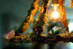 Hanging Pendant Cage Light Fixture Moss Flowers by mysecretlite