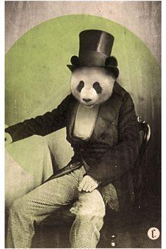 Chase Kunz Proper Panda Poster 18