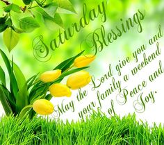 Saturday Blessings!  May the Lord give you and your family a weekend of peace and joy.