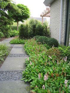 Wandelpad met strakke tegels en split  #Modern #Tuinontwerp #Tuin #Garden Shade Garden, Garden Plants, House Goals, Pathways, Perennials, Stepping Stones, Garden Design, Sidewalk, Cottage