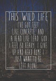 this wild life lyrics | This Wild Life - Concrete lyric sign I made, follow my main blog