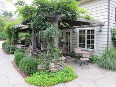patio with a pergola and vines for shade
