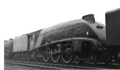 A4 60025 Falcon Abandoned Train, British Rail, Steam Engine, Steam Locomotive, A4, Locomotive