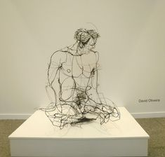 David Oliveira - Wire sculptures.