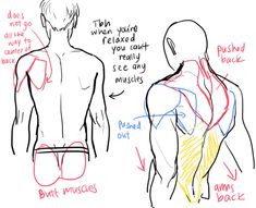 How to draw a male back - human anatomy- Drawing reference Back Drawing, Guy Drawing, Drawing Poses, Drawing People, Drawing Tips, Gesture Drawing, Human Figure Drawing, Figure Drawing Reference, Anatomy Reference