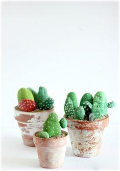 Cactussen www.veetje.be