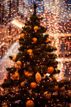 beautiful Christmas...