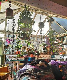 Dream Rooms, Dream Bedroom, Chambre Indie, Hippy Room, Room With Plants, Deco Originale, Indie Room, Pretty Room, Room Goals