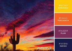 101 Color Combinations to Inspire Your Next Design – Arizona Sunset Color Palette