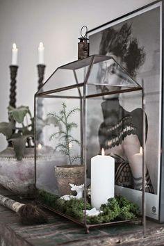 die 63 besten bilder von ohne moos nix los mooswand oder bild als deko moos oder und farben. Black Bedroom Furniture Sets. Home Design Ideas