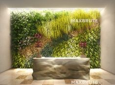Model Vertical garden MAXBRUTE PRO 2 Jackson Hole Wy, 3ds Max, Green Plants, Growing Plants, Plant Decor, Garden Design, Home And Garden, Outdoor Decor, Model