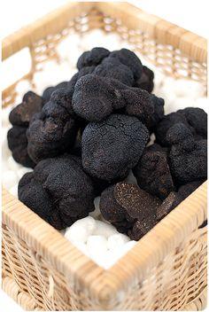The Black Périgord Truffle - Mundaring Truffle Festival