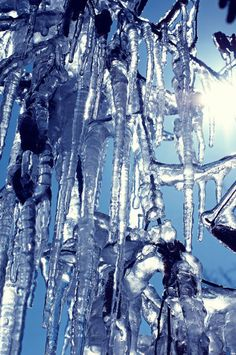 'Eizapfen Welt' von Tanja Riedel bei artflakes.com als Poster oder Kunstdruck $20.79