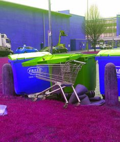 Trash Trolley