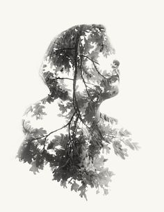 We Are Nature Vol. III: We Are Nature Vol. III: New Double and Triple Exposure Portraits by Christoffer Relander (these are created in-camera with no Photoshop!)  http://www.thisiscolossal.com/2013/12/we-are-nature-vol-iii-new-double-and-triple-exposure-portraits-by-christoffer-relander/