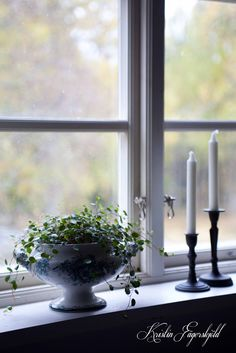 Love this picture! I mitt paradis Window Sill Decor, Decor, Cottage Style, Windows, Own Home, Window Sill, Table Decorations, Green Life, Home Decor