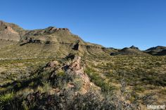 Volcanic dike leading up to the foothills of the Chisos Mountains. Big Bend National Park, Texas