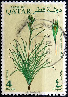 Qatar. PLANTS. CYMHOPOGON PARKERI. Scott 752 A164, Issued 1991 June 20, Litho., Wmk 368, Perf. 12 1/2 x 13 1/2, 4. /ldb.
