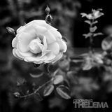 Growing [180g Vinyl] [LP] - Vinyl