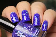 Iced Lacquer: KBShimmer Winter 2014 Collection