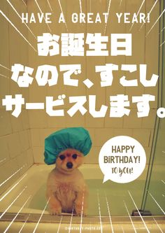 Happy Birthday Animals, Animal Birthday, Birthday Photos, Poster, Cards, Anniversary Pics, Posters, Maps, Playing Cards