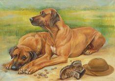 Rhodesian Ridgeback portrait ORIGINAL OIL by CanisArtStudio