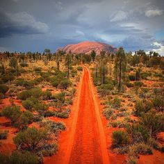 épinglé par ❃❀CM❁✿The red road to Uluru in Australia - if you've ever wanted to do a trip, check our luxury tours and benchmark tours that take in Uluru kirkhopeaviation.