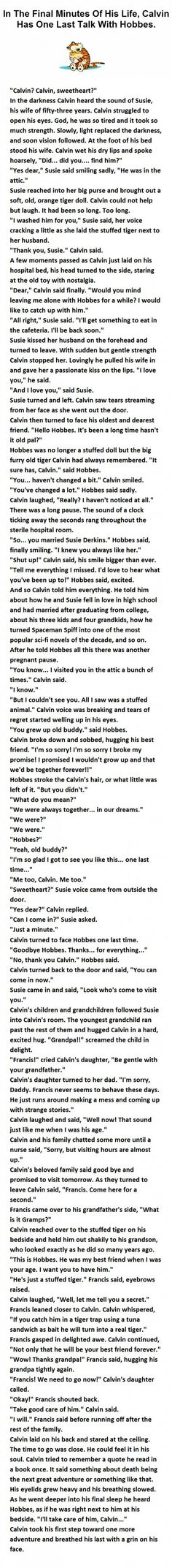 Feels - This guy just changed the way we see Calvin and Hobbes
