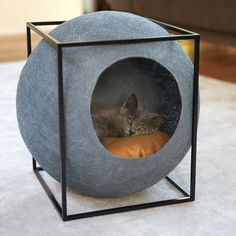 Cats Are Falling In Love With These Beds–Just Wait Until You See Who Makes Them…