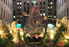 How Green Are Christmas Trees? Eluxe Magazine
