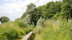 02 base landscape architecture Garden of the Familistère « Landscape Architecture Works | Landezine